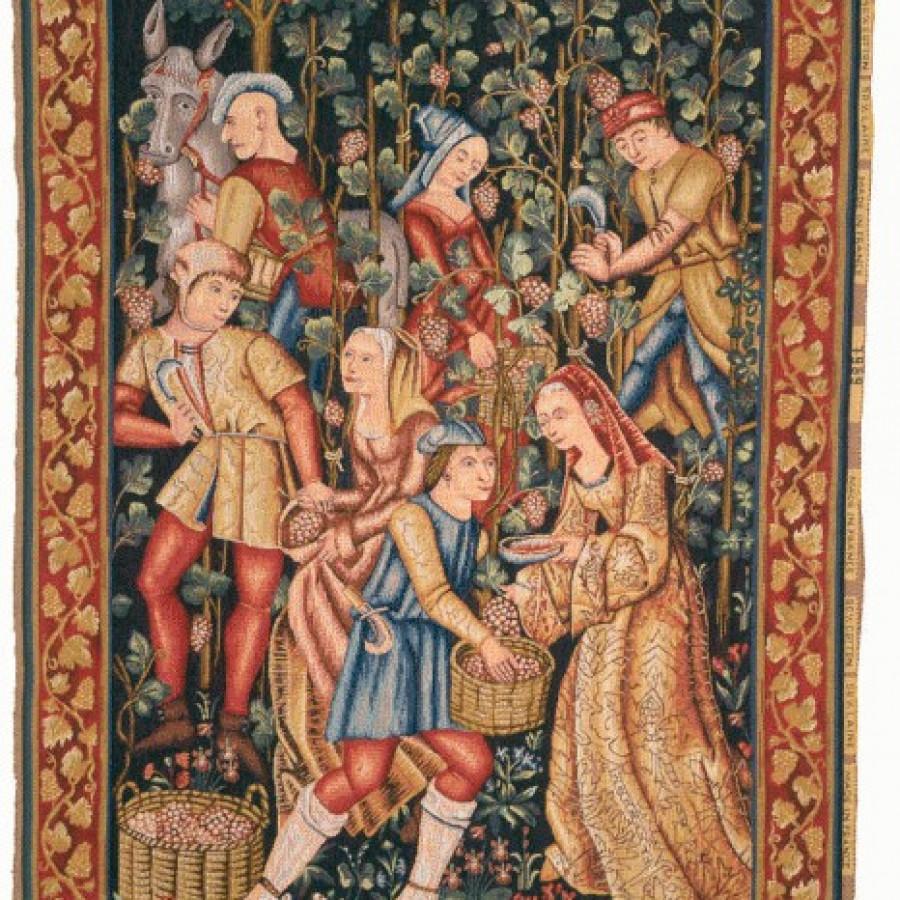 Tapestry Grap harvest