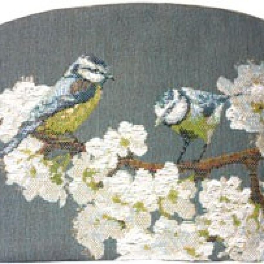 2023G : Passerines on branch, grey background