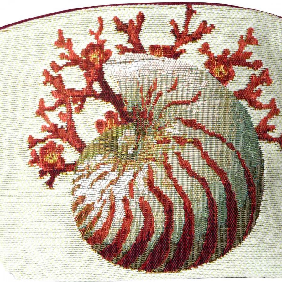 5159C : Coraux et coquillages, fond blanc