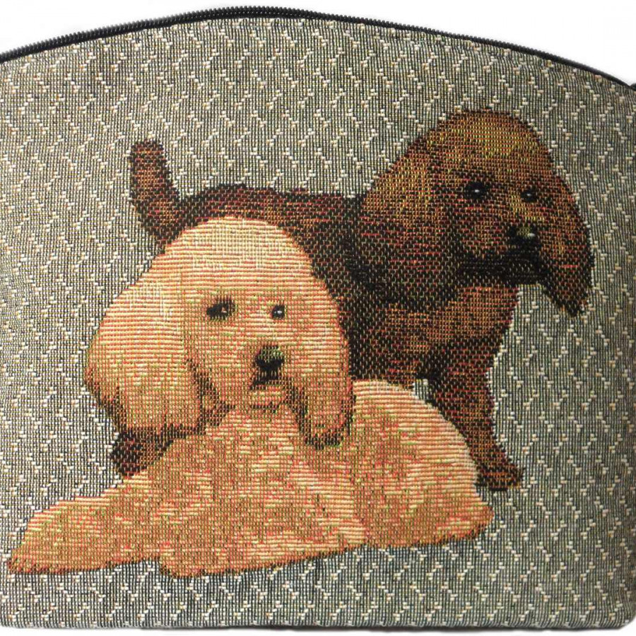 2188G : Toy poodles grey background