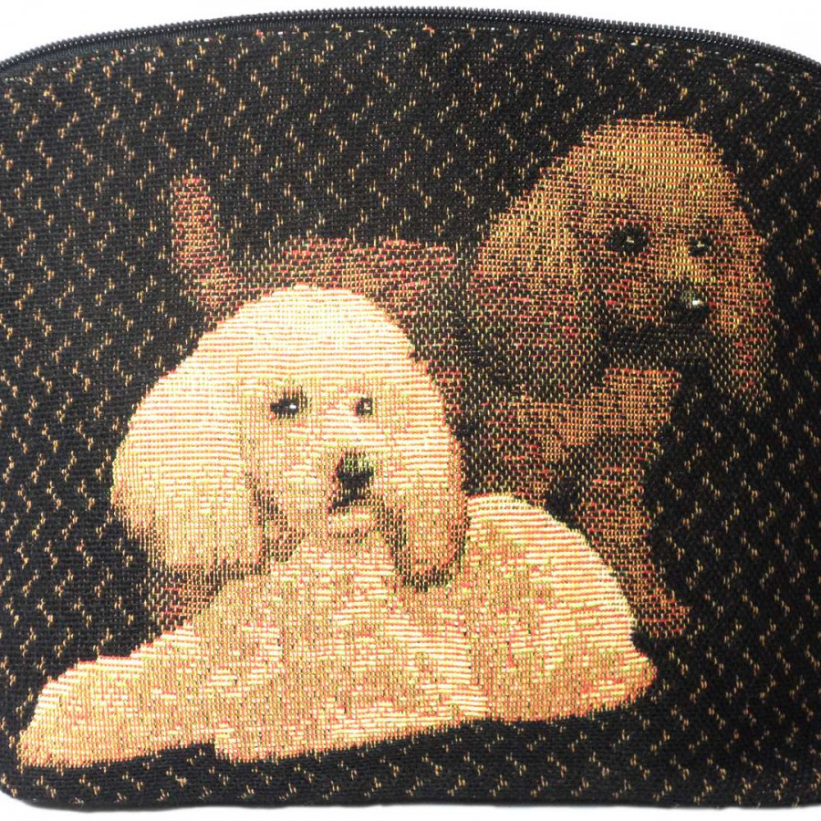 2188N : 1 toy poodle black background