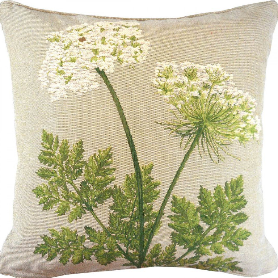 2249G : 2 Umbels natural background