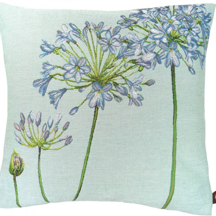 5359B : Agapanthus 4 flowers blue background
