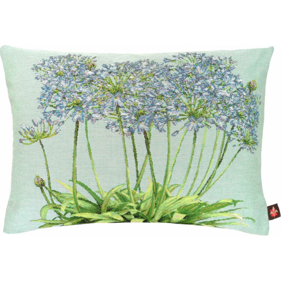 5361B : Agapanthus bunch