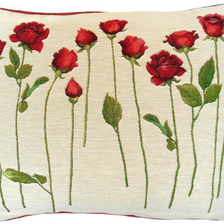 5423B : Roses sur tige, fond blanc