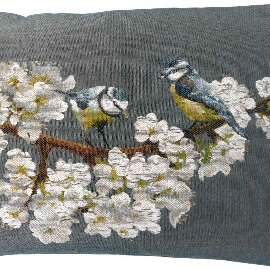 2015G : Passerines on branch, grey background