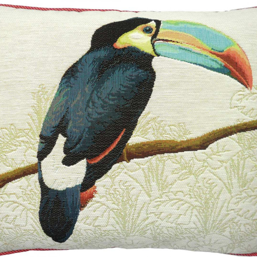 5519B : Toucan with blue beak, white background