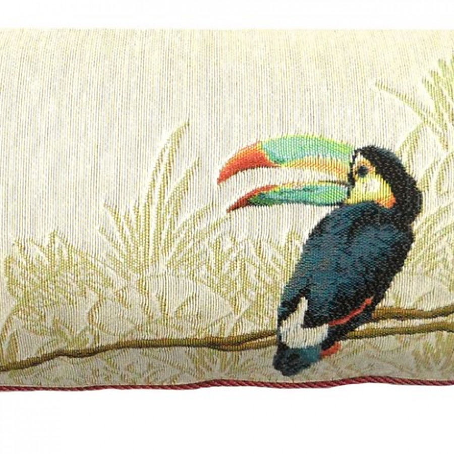5522B : Two toucans in the jungle, white background
