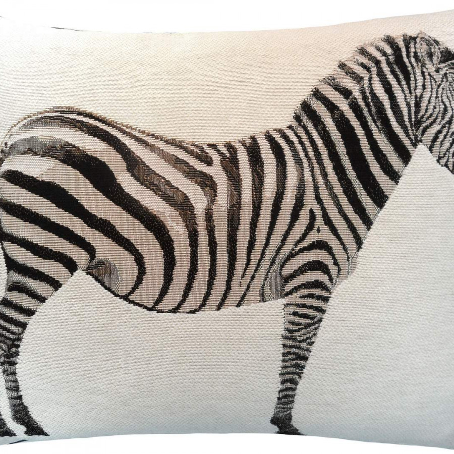 2165B : zebra on white background