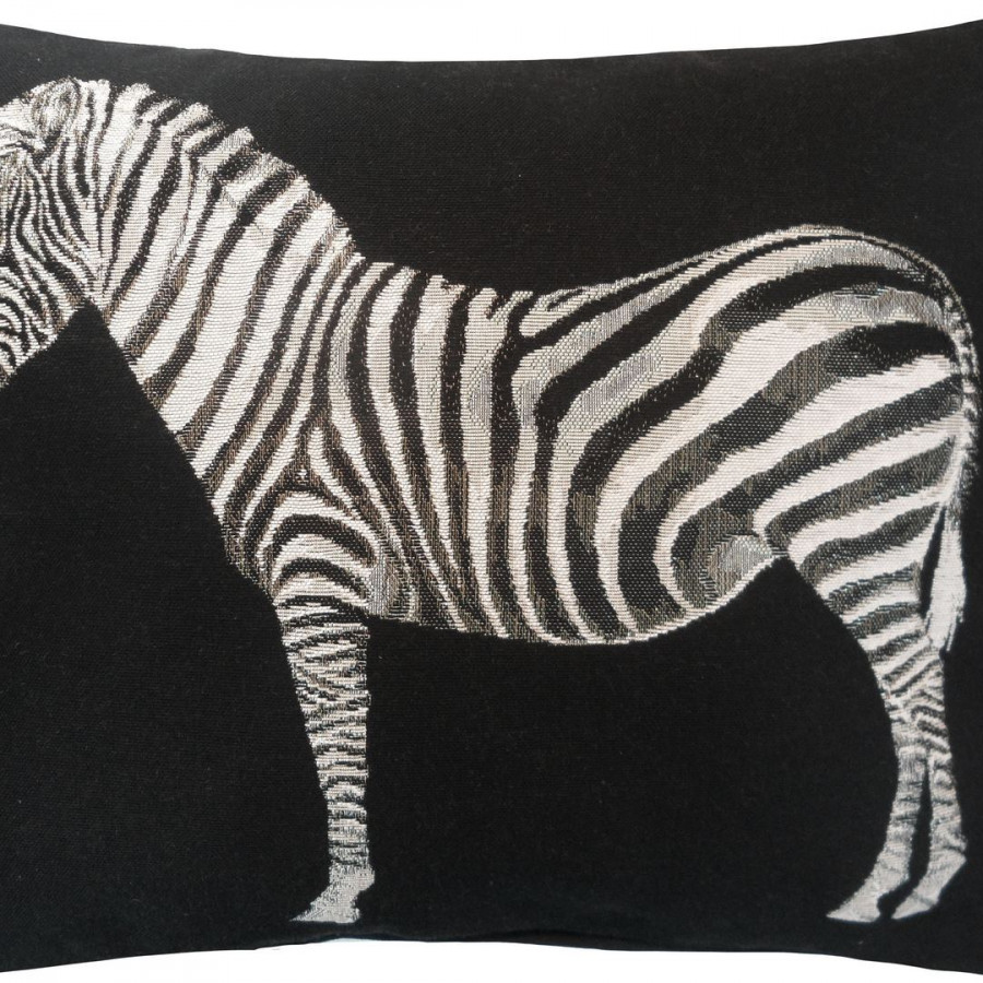 2165N : zebra on white background