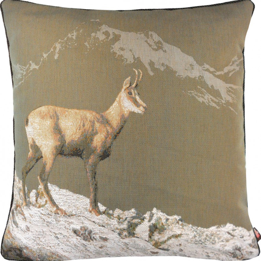 2191G : Chamois in winter, grey background