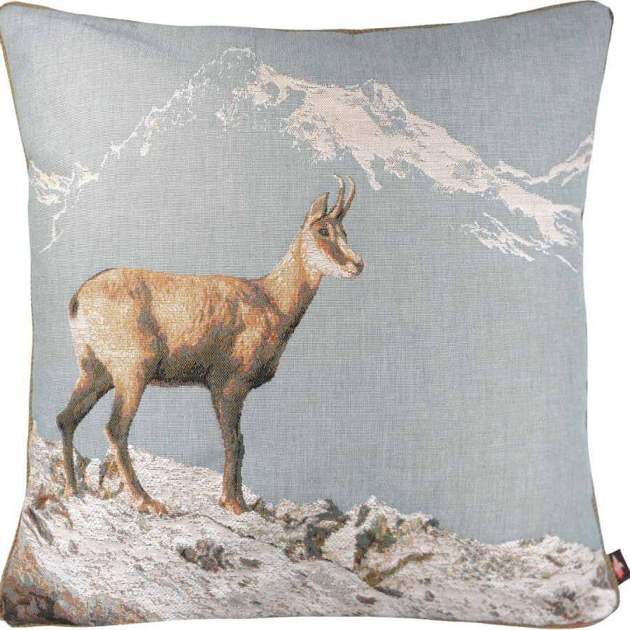 2191T : Chamois in winter, blue background