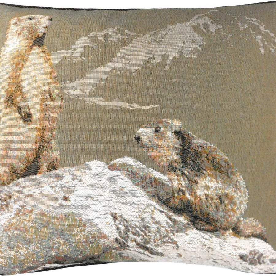 2192G : Marmots in winter, grey