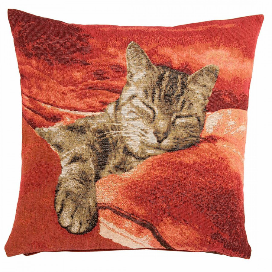 8697R : Chat endormi ,fond rouge