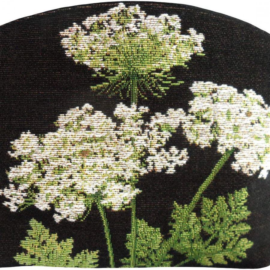2241N : Umbels black background