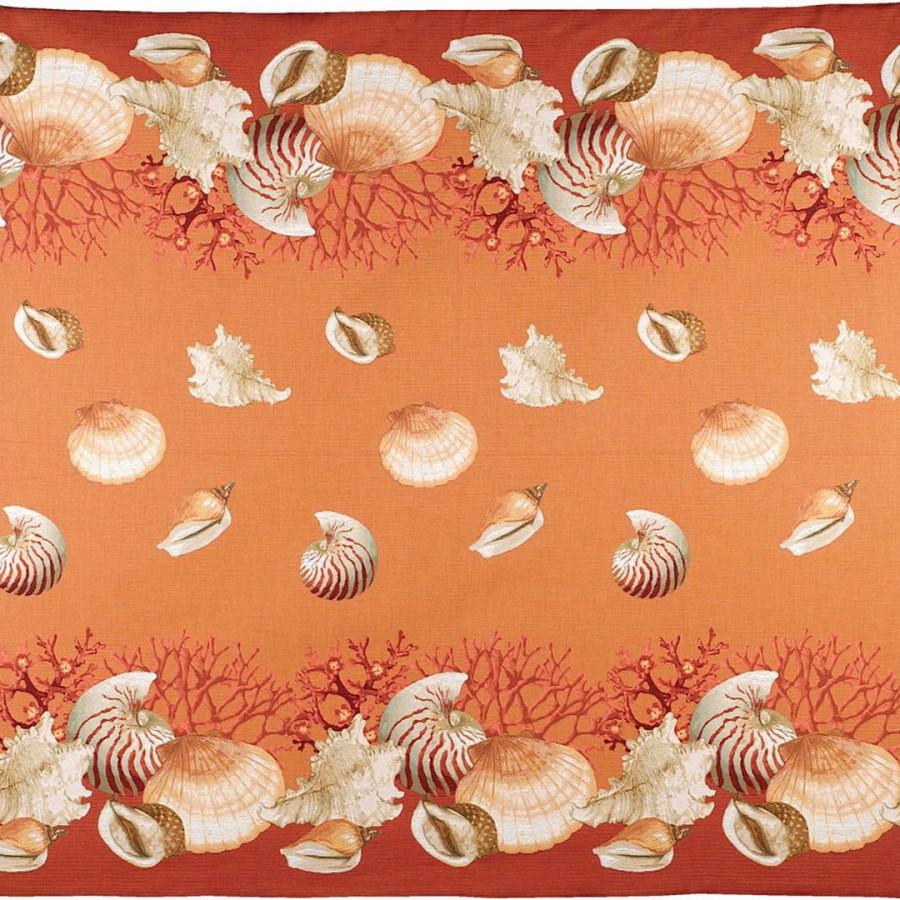 5160O : Coquillage , fond orange