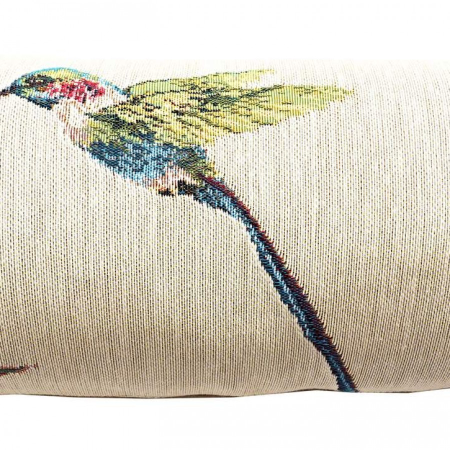 5676B : Eucalyptus et colibri, fond blanc
