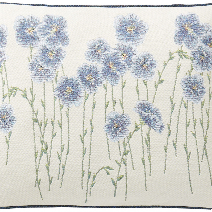 5729B : flax flower field, white backgroung
