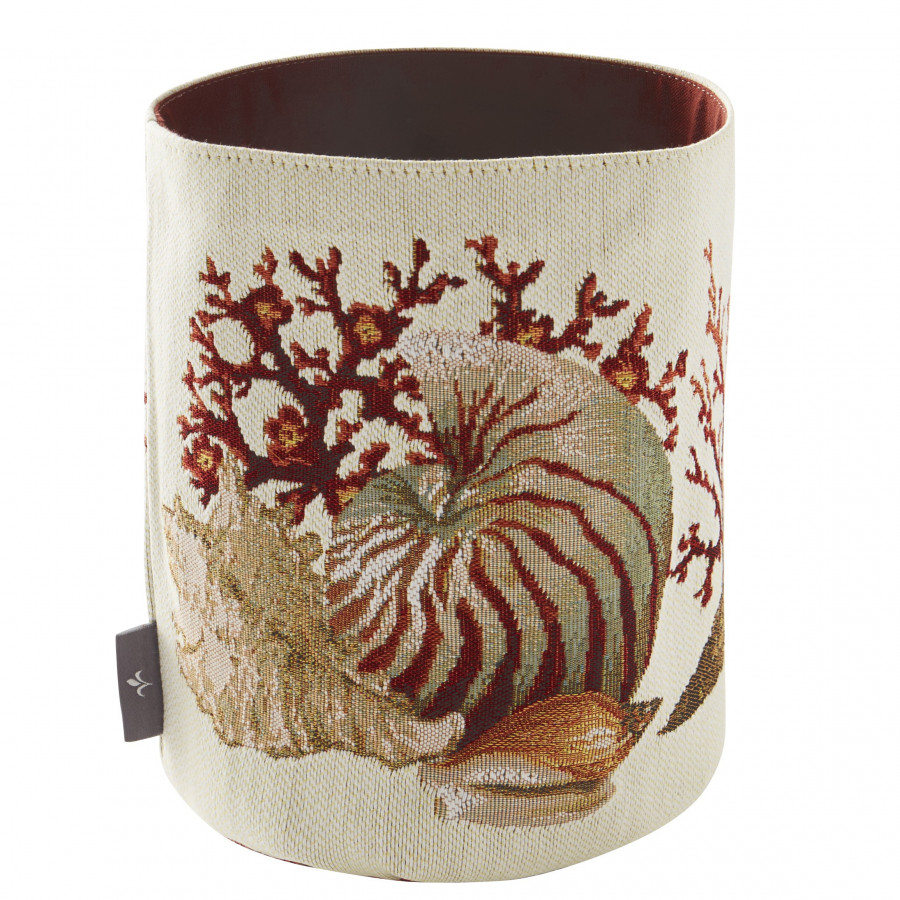Basket Corals and seashells