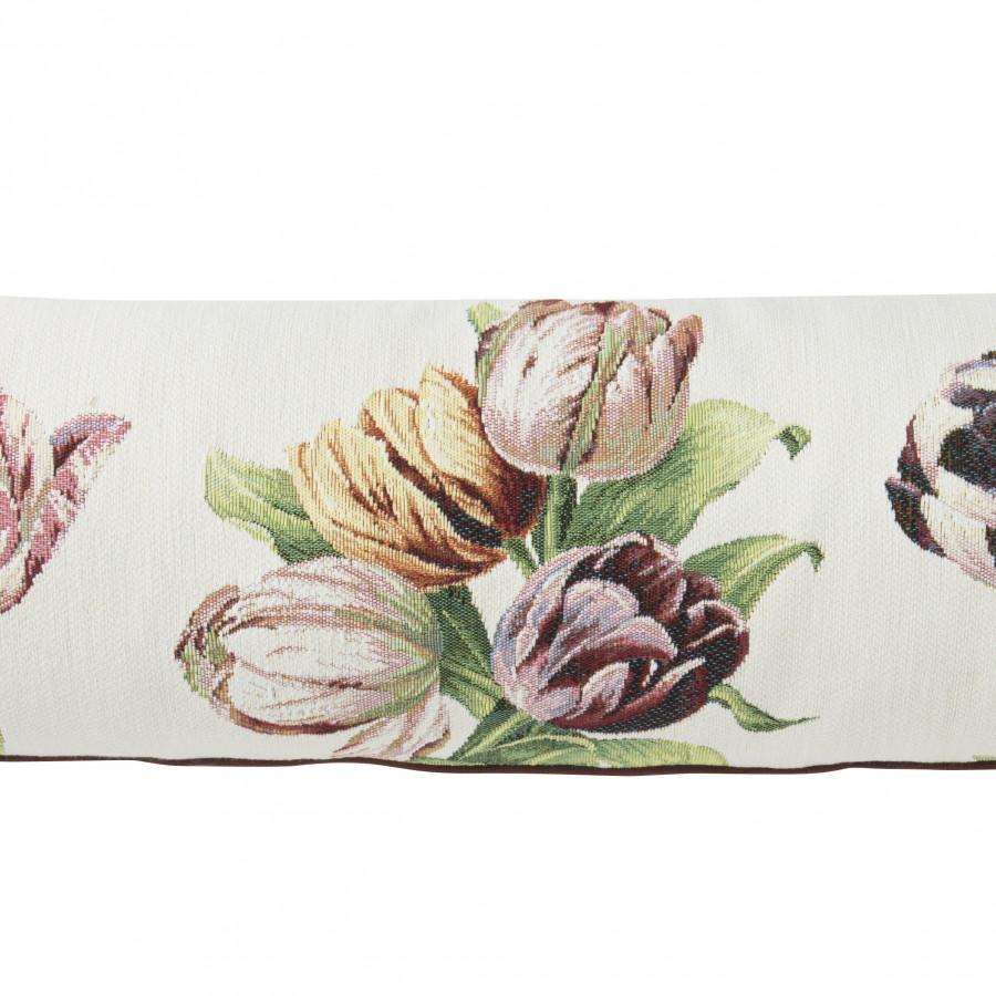 5764B  : Tulipes, fond blanc