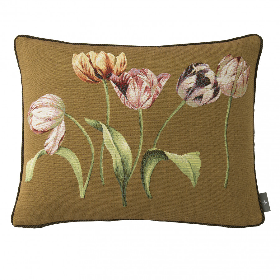 5763K : Five tulips, brown background