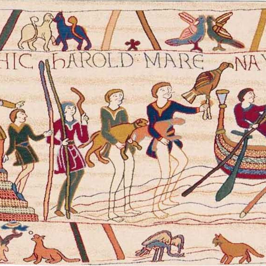 Tapestry Bayeux
