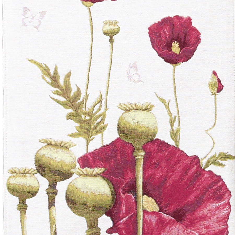 5274 : Poppies, white background